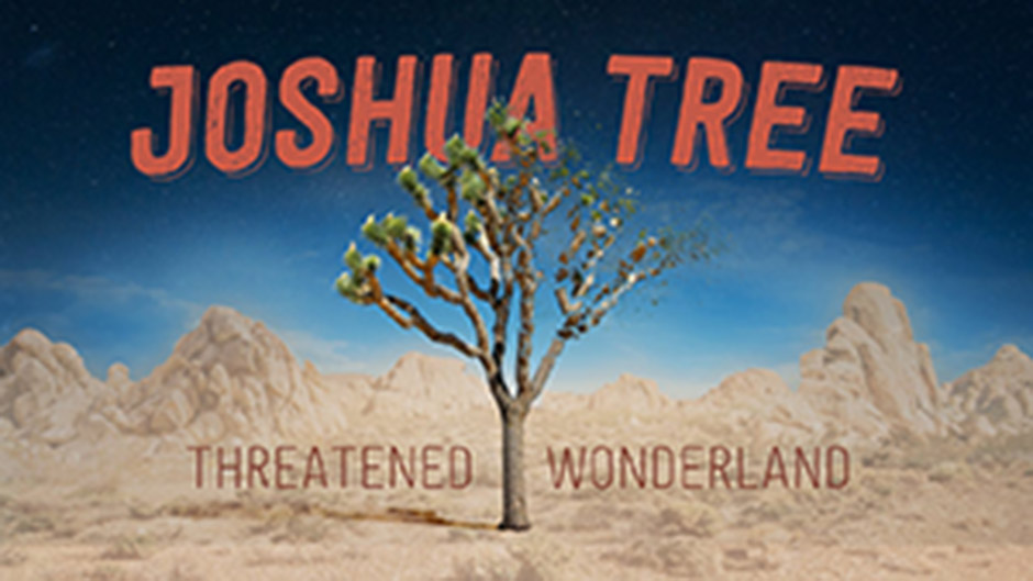 Joshua Tree: Threatened Wonderland